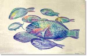 Parrot Fish Antigua Snorkelling