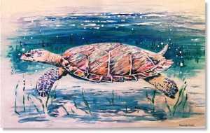 Antigua boat trips Turtle snorkelling